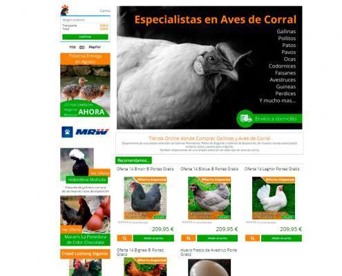 avicola de seleccion